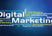 Freelance Digital Marketing